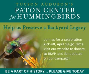 Tucson Audubon Paton Center for Hummingbirds Campaign