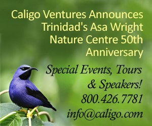 Caligo Ventures - Trinidad's Asa Wright Nature Center 50th Anniversary